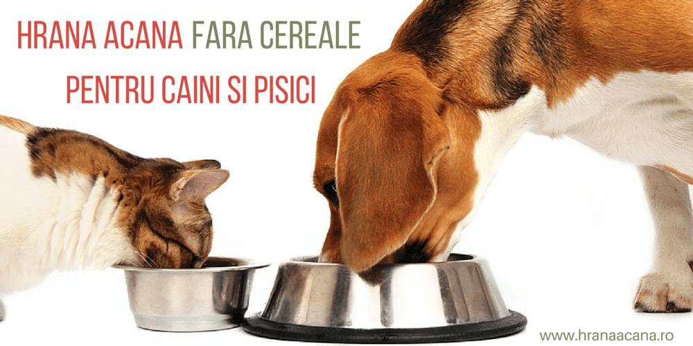 Hrana Acana fara cereale pentru caini si pisici